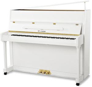 Thomann Adagio 118 WH/P Piano